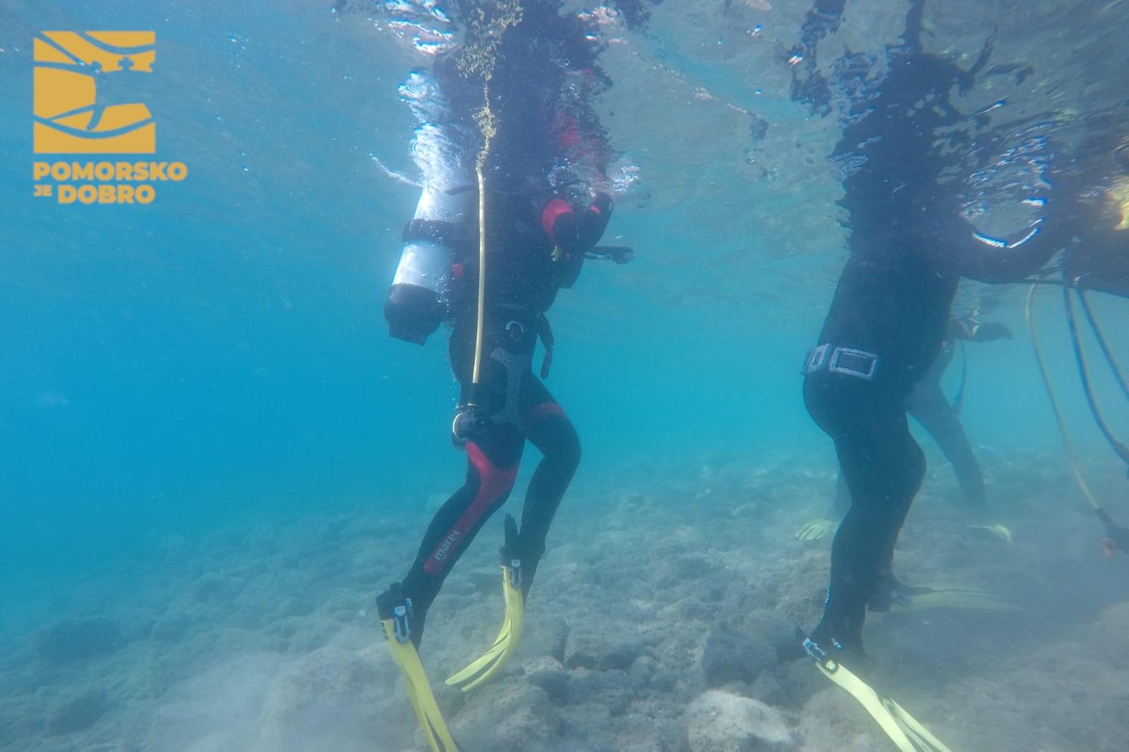 POMORSKO JE DOBRO Promoviramo ronjenje među mladima u svrhu očuvanja Jadrana